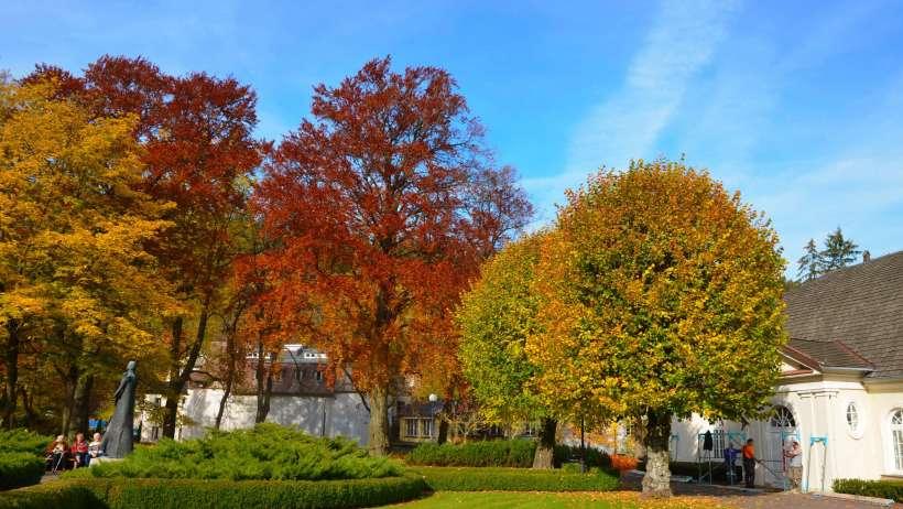 Natura Centrum, Jadalnia, Duszniki Zdrój, turnus odchudzający